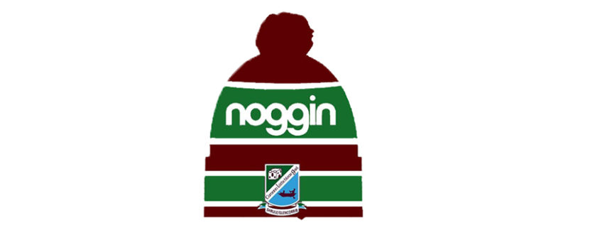 Noggin Bobble Hat